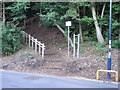 NZ2642 : Steps from Durham Railway Station to Wharton Park by Sandy Gemmill