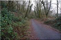 SX4970 : Drakes Trail cycle path by jeff collins