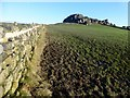 SE2649 : Muddy Footpath Towards Almscliff Crag by Rude Health