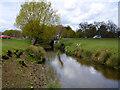 TQ2174 : Beverley Brook by Roehampton Gate road bridge by Robin Webster