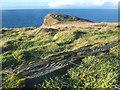NR6119 : Small Headland near Ballygroggan by Steve Partridge