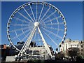 SJ8498 : Wheel of Manchester, Piccadilly Gardens by Andrew Hill