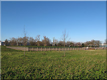 TQ4277 : Horse exercise area on Woolwich Common  by Stephen Craven