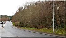 J3368 : Former Belvoir Hospital site, Belfast (2) by Albert Bridge