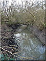 SP1685 : Tributary of the Hatchford Brook by Richard Law