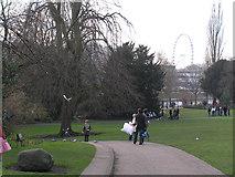SE5952 : Museum Gardens, York by Richard Cooke