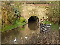 SO9969 : Tardebigge Tunnel - south portal by Chris Allen
