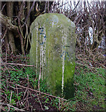 SD4764 : Milestone, Lancaster Canal by Ian Taylor