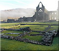 SO5300 : Across the remains of the Inner Court towards Tintern Abbey by Jaggery