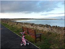 NT6578 : Coastal East Lothian : Cycling The John Muir Way by Richard West