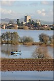 SO8832 : Tewkesbury Abbey viewed across a flooded Severn Ham by Philip Halling