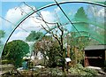 SD4861 : Williamson Park Aviary by Gerald England