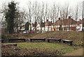SK5446 : Springfield Corner Nature Reserve, Moor Bridge, Notts. by David Hallam-Jones