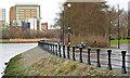J3473 : Path, River Lagan, Ravenhill Reach, Belfast - January 2014 by Albert Bridge