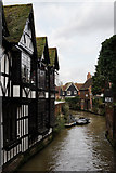 TR1457 : Great Stour, Canterbury by Peter Trimming