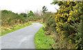 J4173 : The Comber Greenway, Dundonald (7) by Albert Bridge