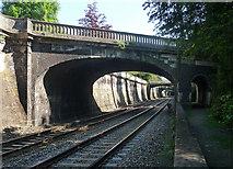 ST7565 : Bridges, Sydney Gardens, Bath by Stephen Richards
