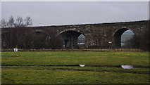 NY7063 : Railway viaduct over The River South Tyne by Ian Greig