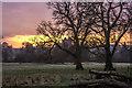 NX9666 : Morning light by Hugh Close