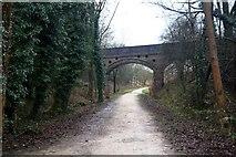 SK1750 : On the Tissington Trail by Graham Hogg