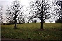 SK1751 : Ridge and furrow field on Tissington Estate by Graham Hogg