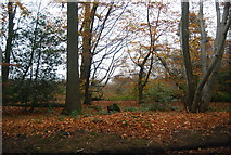 SU8429 : Stanley Common by N Chadwick