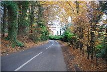 SU8429 : Midhurst Rd by N Chadwick