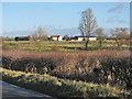 TL3854 : Across Bourn Brook by John Sutton