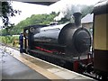 SX5994 : Saddle Tank Locomotive at Okehampton Station by Jeff Buck