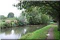 TQ3287 : New River by N Chadwick