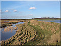 TQ8796 : Bridgemarsh Creek, Sea Wall & Borrow Dyke by Roger Jones