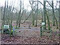 SU7487 : Fawley Bottom Wood by Robin Webster