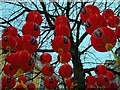 SJ8398 : Chinese Lanterns in St Ann's Square by David Dixon