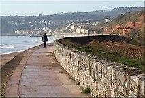 SX9777 : Coast path near Langstone Rock by Derek Harper