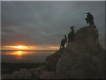 SD4264 : Cormorants at sunset on the Stone Jetty, Morecambe (2) by Karl and Ali