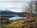 NH2761 : Loch Achanalt by Julian Paren