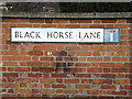 TM1644 : Black Horse Lane sign by Adrian Cable