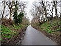 NT2376 : Cycleway and footpath alongside Boswell Avenue by Christine Johnstone