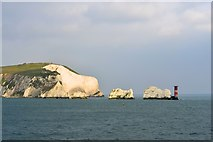 SZ2984 : Polar Bear at The Needles, Isle of Wight, viewed from P&O's Adonia by Terry Robinson