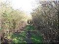 SK4424 : Green Lane by Ian Calderwood
