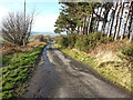 NZ0658 : Lane that leads up Apperley Bank from New Ridley by Clive Nicholson
