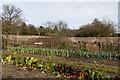 SU8612 : The Kitchen Garden, West Dean Gardens by Ian Capper