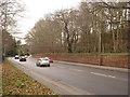 SK5338 : Derby Road alongside Wollaton Park by Alan Murray-Rust
