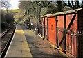 SX8855 : Platform, Galmpton Halt by Derek Harper