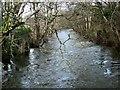 SX8386 : River Teign by Derek Harper