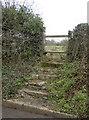 ST5655 : Across Pound Cross by Neil Owen