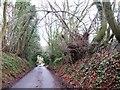 SU8988 : Chapman Lane by Alex McGregor