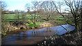 SJ7067 : River Dane near Middlewich by Des Blenkinsopp