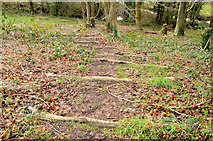 J3268 : Path and steps, Minnowburn, Belfast by Albert Bridge