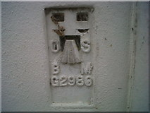 SN4562 : OSBM Flush Bracket G2986 - Aberaeron, Bank by N Scott